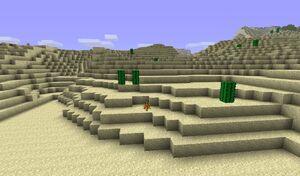 Old Desert.jpg