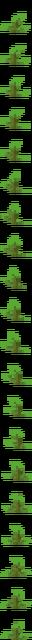 Kelp (texture) JE3.png