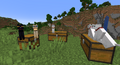 1.2.3 catsSitting3chests.png
