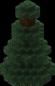 Mega Spruce Tree.png