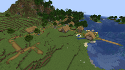 Village in Plains biomes.png