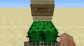 Cactus 1048576 after.png