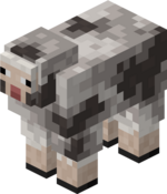 Rocky Sheep.png