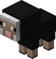 Baby Black Sheep JE2.png