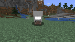 Sheep Eating Grass.png