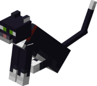 Sitting Tamed Tuxedo Cat with Red Collar.png