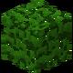 Oak Leaves JE3 BE4.png