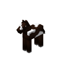 Baby Darkbrown Horse with White Field.png