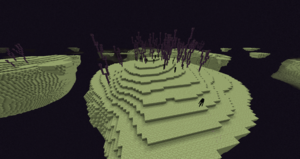 End (Biome Part).png