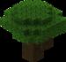 Dark Oak Tree.png