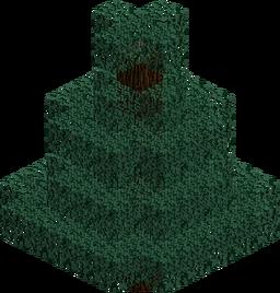 Spruce Tree JE1 BE1.png