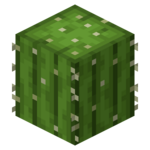 Cactus BE4.png