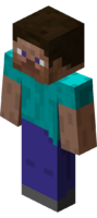 Steve player character model