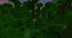 Jungle at dawn.png