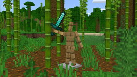 Bamboo & Sword 1.17.20.20.jpg