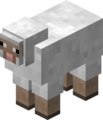 White Sheep JE1.png