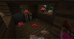 Witch Hut.jpg