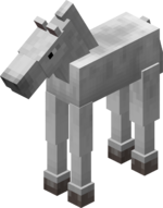 Foal.png