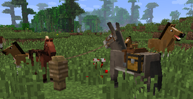 13w21a Banner.png