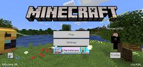 Minecraft Bedrock v1.14.30.jpg