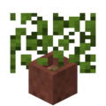 Potted Leaves.png