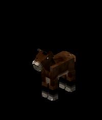 MuleFoal.png
