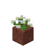 Potted Azure Bluet.png