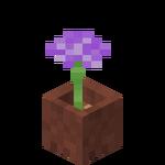 Potted Allium.png