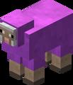 Magenta Sheep Revision 1.png