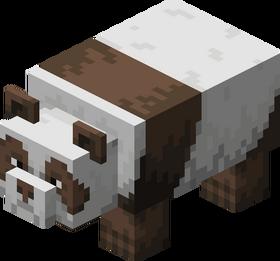 Brown Panda.png