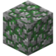 Mossy Cobblestone Revision 2.png
