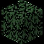 Spruce Leaves (fast) JE4.png