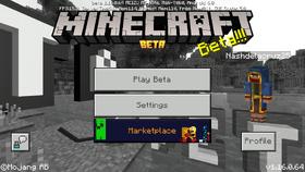 Bedrock 1.16.0.64.png