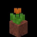 Potted Orange Tulip.png