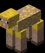 Sheared Yellow Sheep.png