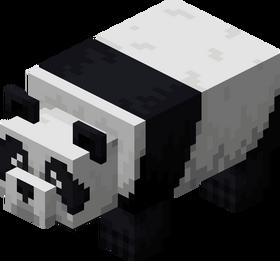Worried Panda.png