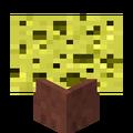 Potted Sponge.png