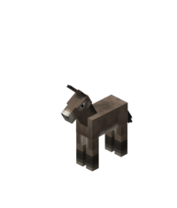DonkeyFoal.png