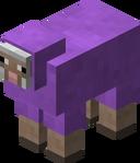 Purple Sheep JE1.png