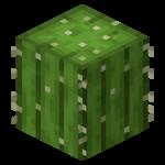 Cactus BE4.png