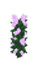 Peony JE2 BE3.png