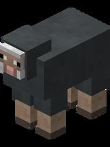 Gray Sheep.png