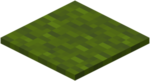 Green Carpet.png