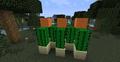 Simple-cactus-farm.png