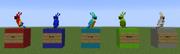 Different 5 color parrots