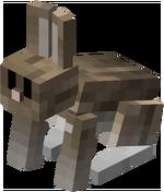 Salt & Pepper Rabbit.png