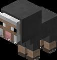Baby Gray Sheep Revision 1.png