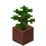 Potted Jungle Sapling.png