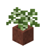 Potted Birch Sapling.png