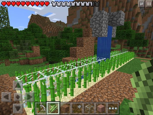 Sugarcanefarm.jpg